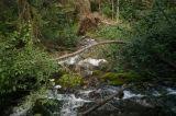 jade_trail01